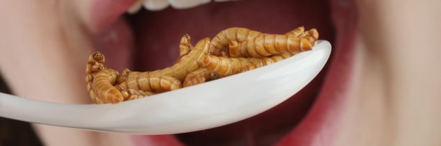 Ogni giorno mangiamo insetti, escrementi e peli di ratto senza saperlo